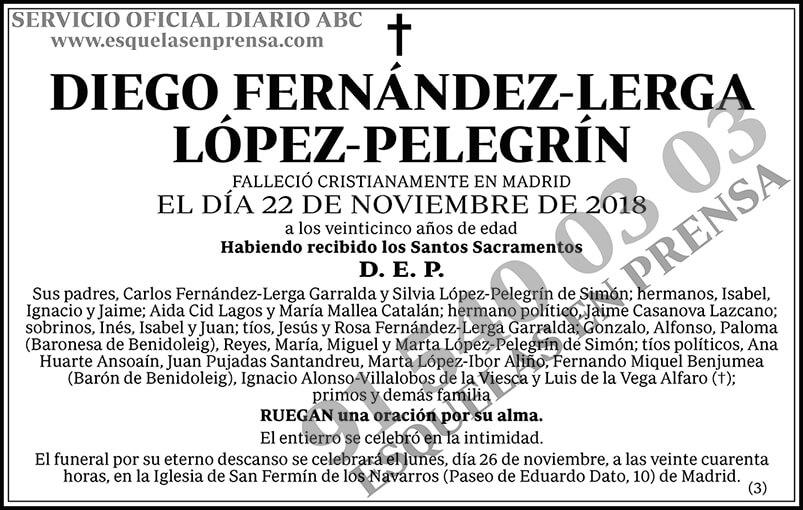 Diego Fernández-Lerga López-Pelegrín